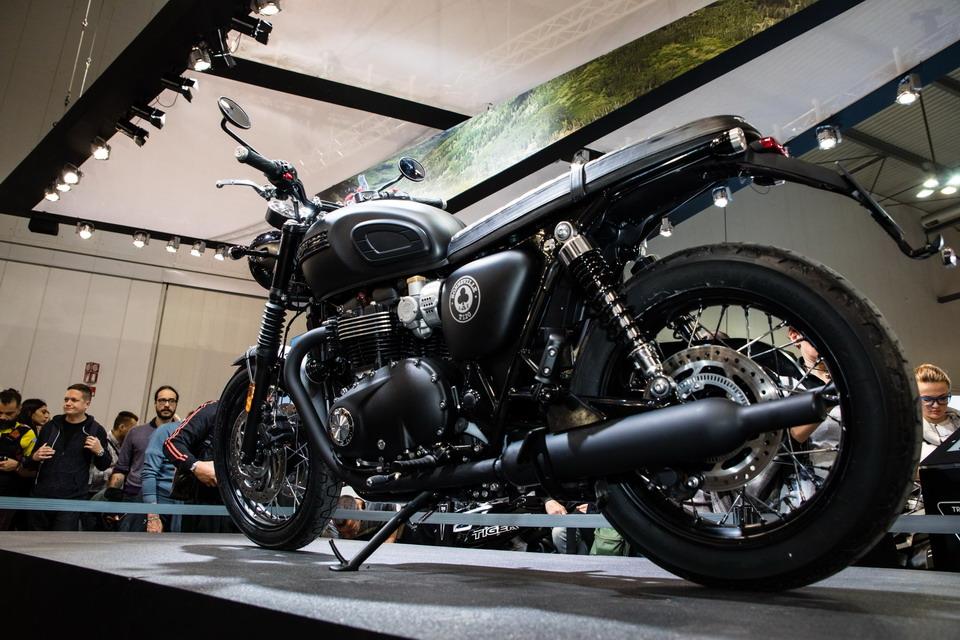 Triumph Daytona Moto2, ADN de competición | MotorEnLinea