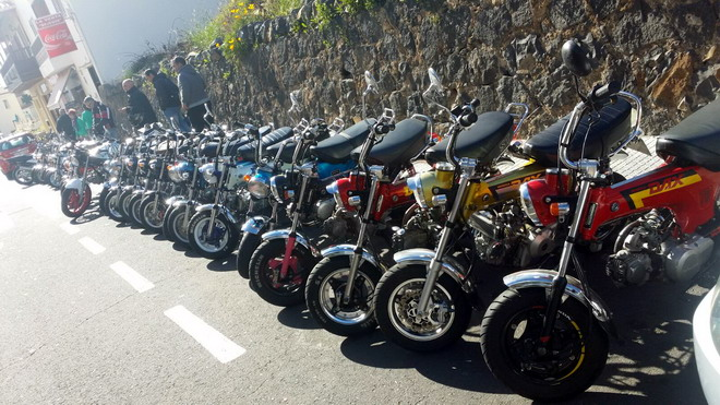 Ninfe Milanuncios Tenerife